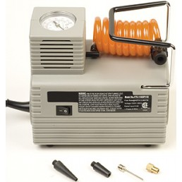 Economy Electric Pump